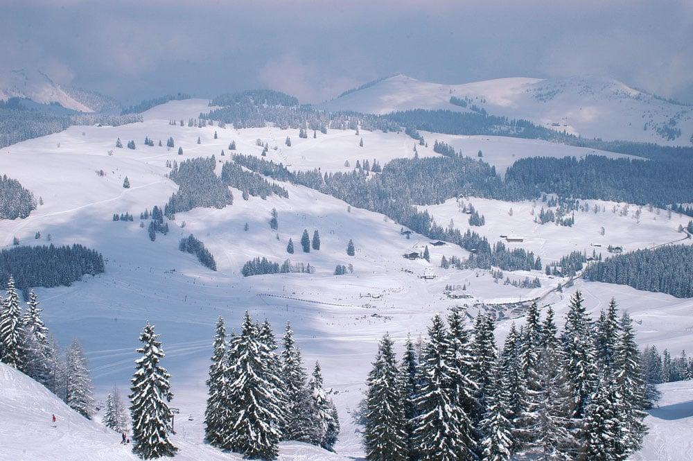 Winter, komm bald wieder! Erinnerungen an schöne Tage im Schnee Postalm Winter