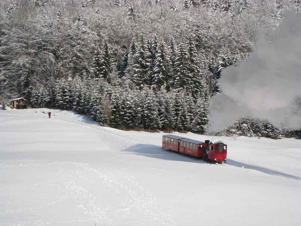Winter, komm bald wieder! Erinnerungen an schöne Tage im Schnee SchafbergbahnimWinter Winter