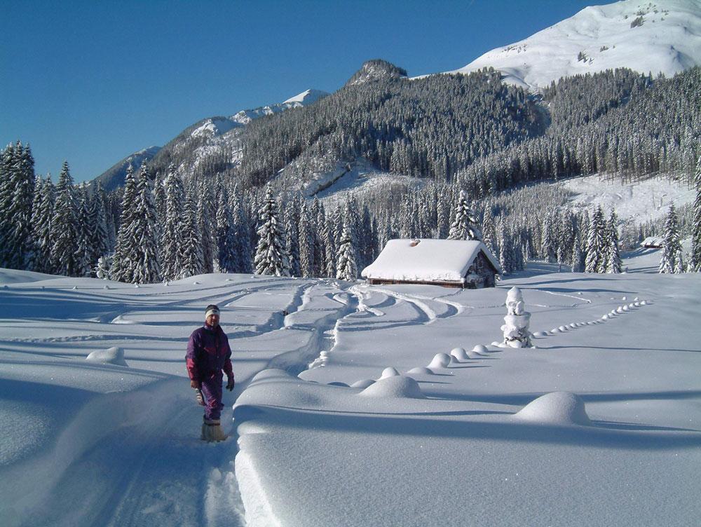 Winter, komm bald wieder! Erinnerungen an schöne Tage im Schnee Winterwandern Winter